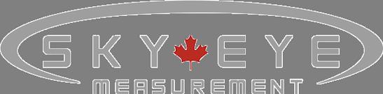 Sky Eye silver TRANS 8211 2019 website